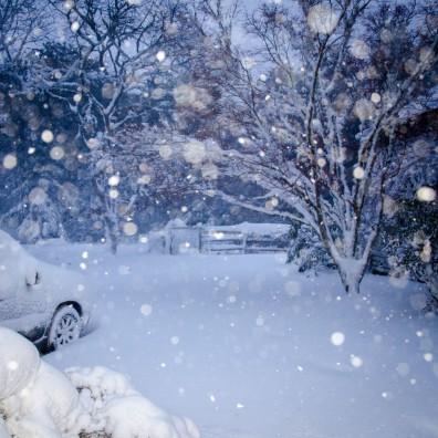 January2015-0241